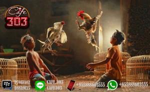 Sabung Ayam Indonesia Resmi Indonesia 2018
